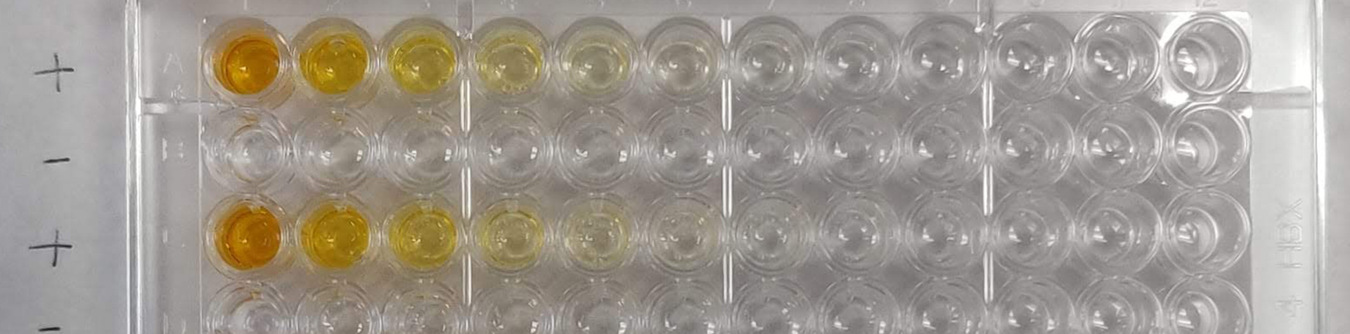 Image of lab flasks