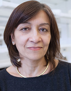 A photo of Nina Bhardwaj, MD, PhD
