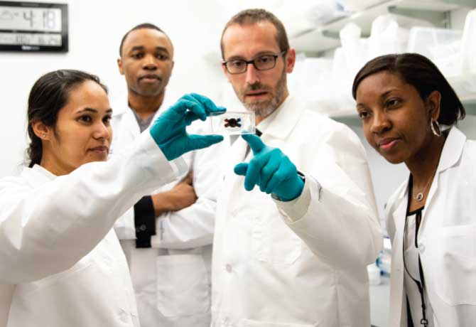 A photo shows Evren Azeloglu, PhD, an Assistant Professor of Medicine (Nephrology) at the Icahn School of Medicine at Mount Sinai with, from left, PhD student Smiti Bhattacharya, medical student Benjamin Adegbite, and research associate Alecia Muwonge.