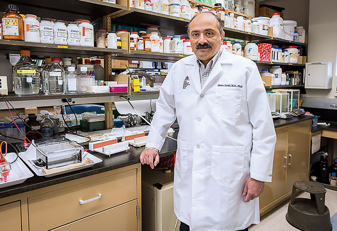A portrait of Mone Zaidi, MD, PhD