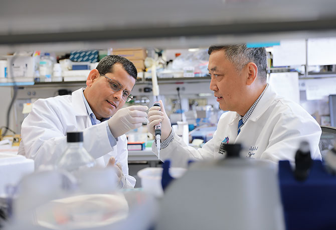 A photo showing Bhaskar Das, PhD, left, and John Cijiang He, MD, PhD
