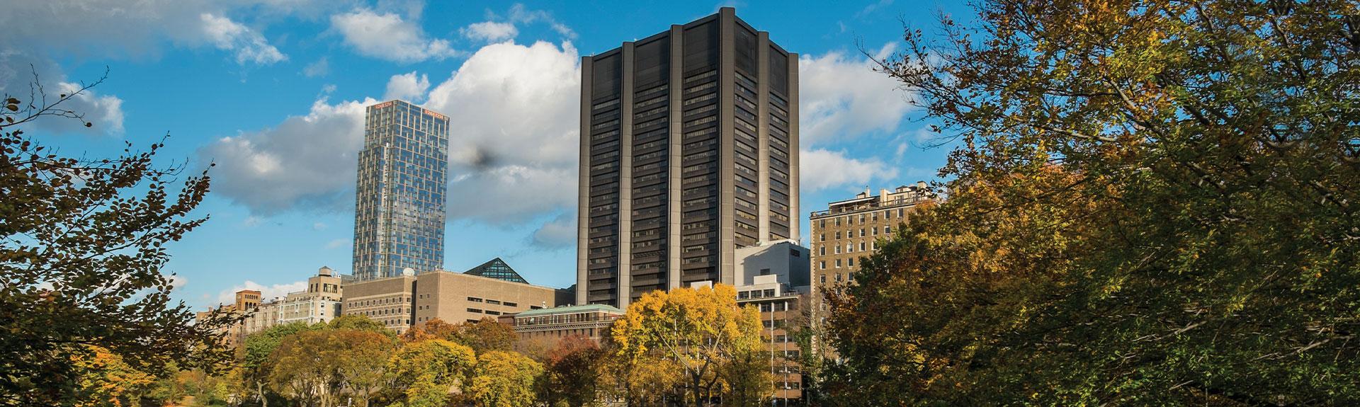 The Mount Sinai Hospital New York City Mount Sinai New York
